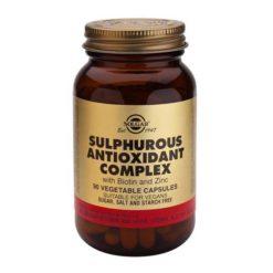 Solgar Sulphurous Antioxidant Complex 90 VegeCapsules