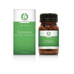 Kiwiherb Echinacea High Potency        60 Capsules